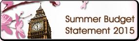 The Budget Statement